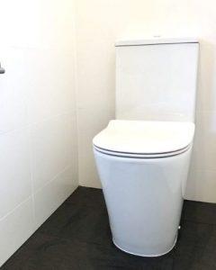 Akins plumbing emergency clogged toilet